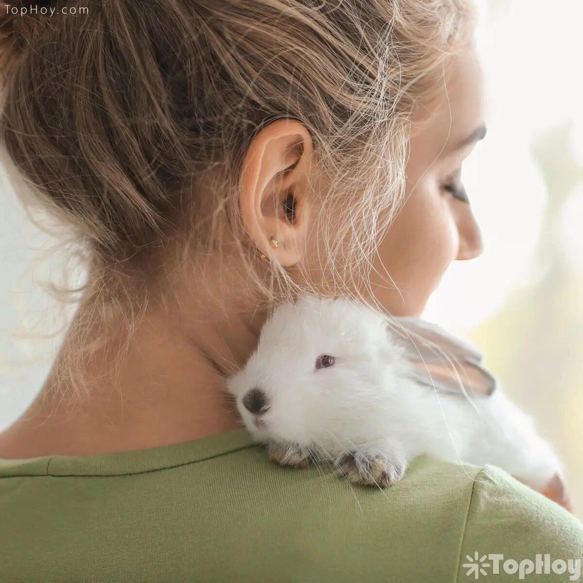 Los conejos requieren muchos juegues y compañía a su alrededor para no aburrirse.